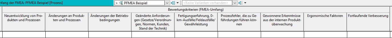 Bewertungskriterien-PFMEA-Beispiel