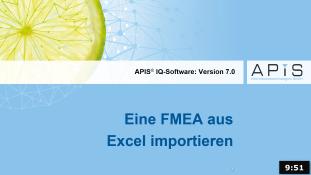 Import einer FMEA aus Excel
