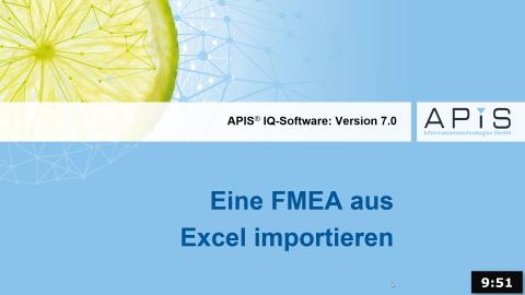 Eine FMEA aus Excel importieren